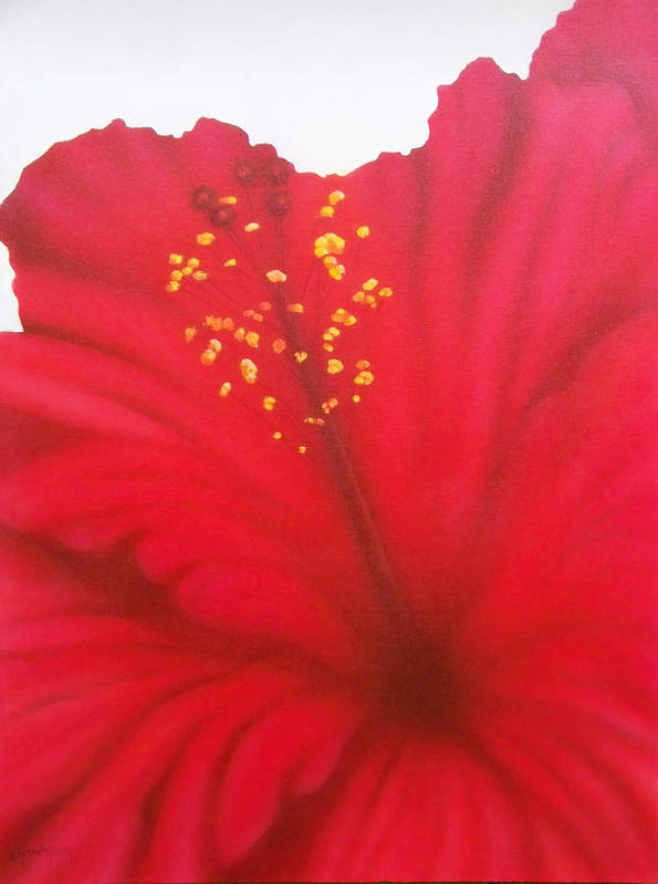 Flowers Poster featuring the painting In My Garden 27 by Brett McGrath