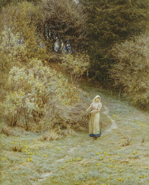 In The Primrose Wood Poster featuring the painting In The Primrose Wood by Helen Allingham