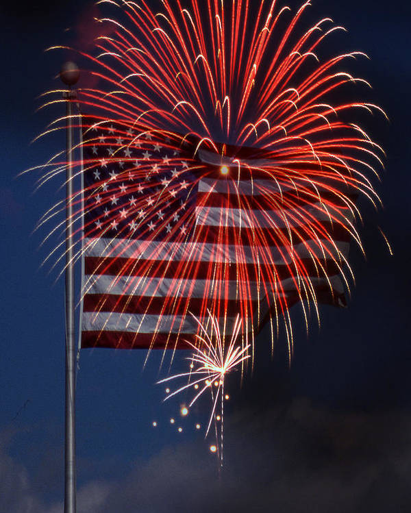 Flag Poster featuring the photograph Independence Day by Skip Willits
