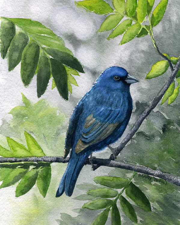 Blue Poster featuring the painting Indigo Bunting by Mary Tuomi
