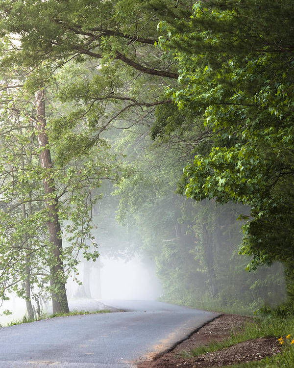 Cades Cove Poster featuring the photograph Into The Fog by Andrew Soundarajan