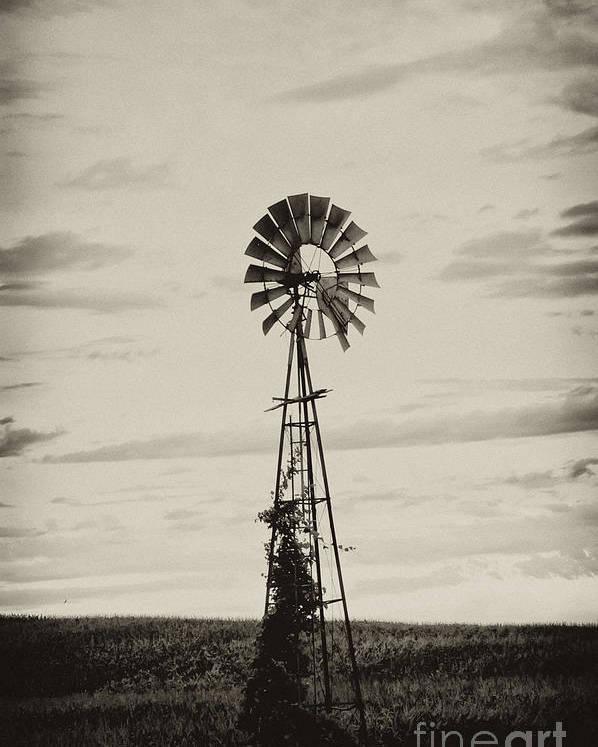 Iowa Poster featuring the photograph Iowa Windmill In A Corn Field by Wilma Birdwell
