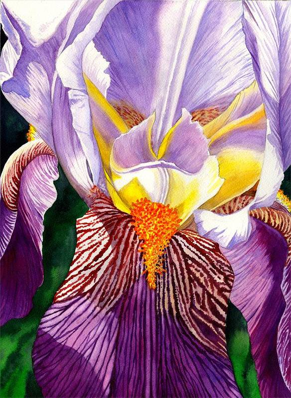 Iris Poster featuring the painting Iris by Catherine G McElroy