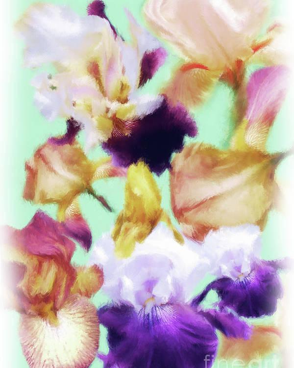 Iris Poster featuring the digital art Iris Collage by Susan Lipschutz