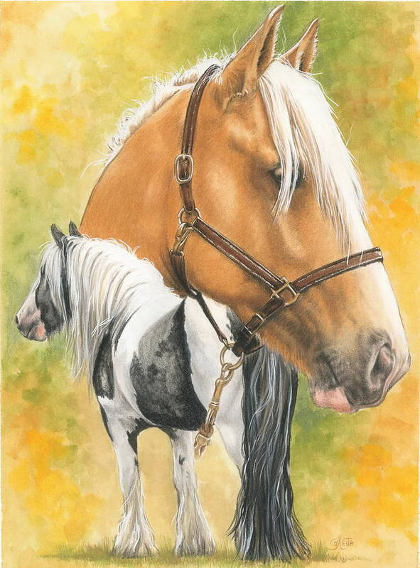 Draft Horse Poster featuring the mixed media Irish Cob by Barbara Keith