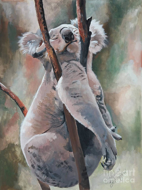 Koala Bear Poster featuring the painting Its About Trust - Koala Bear by Suzanne Schaefer