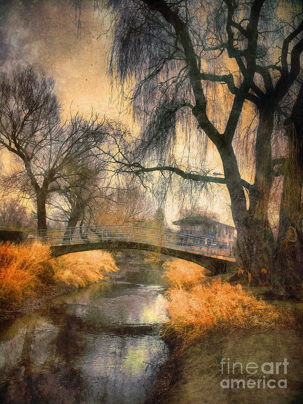 Bridge Poster featuring the photograph January 13 2010 by Tara Turner