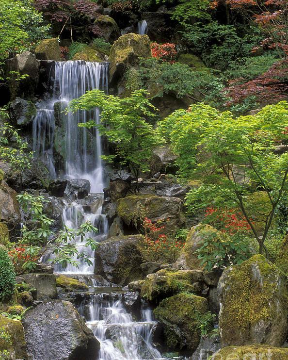 Japanese Garden Waterfall Poster By Sandra Bronstein