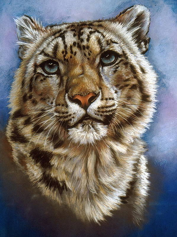 Snow Leopard Poster featuring the pastel Jewel by Barbara Keith