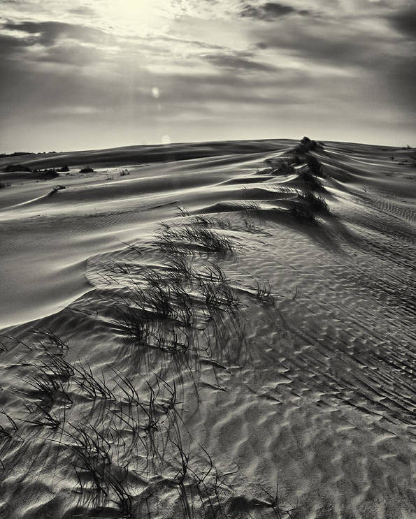 Abstract Poster featuring the photograph Jockey's Ridge Texture 7116 by Dan Beauvais