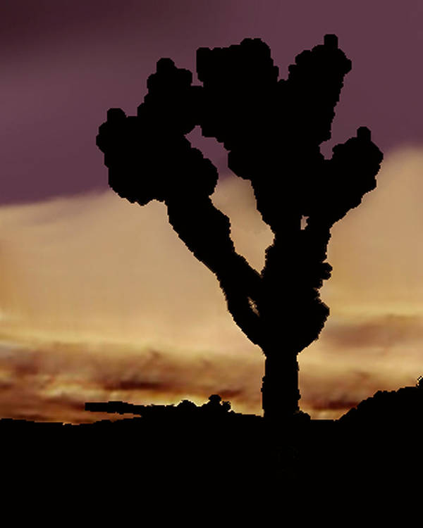 Poster featuring the photograph Joshua Tree Silo At Sunset by Curtis J Neeley Jr