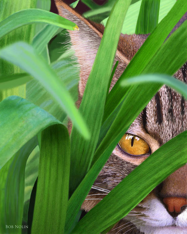 Striped Cat Poster featuring the digital art Jungle Cat by Bob Nolin