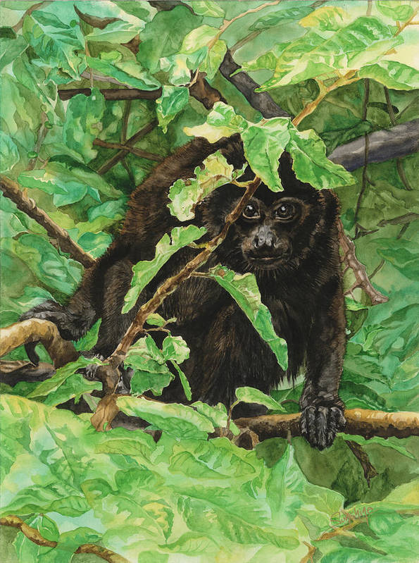 Jungle Animals Poster featuring the painting Jungle Peek A Boo In Costa Rica by Sunshine ONeal Qualls