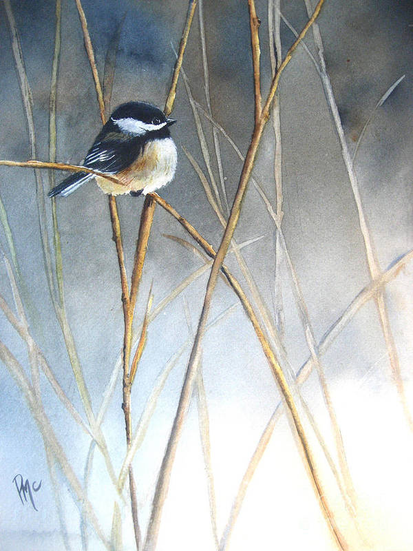 Chickadee Poster featuring the painting Just Thinking by Patricia Pushaw