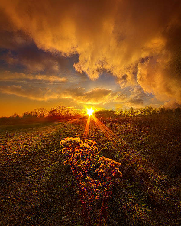 Travel Poster featuring the photograph Just You And I by Phil Koch