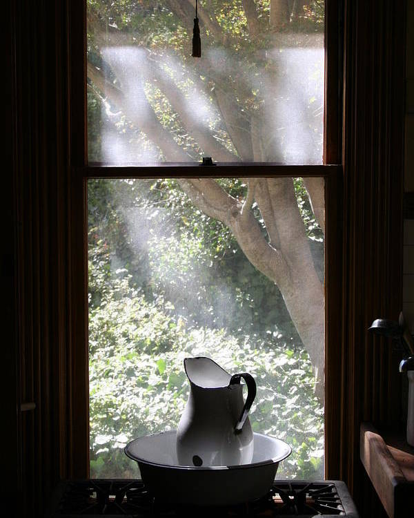 Still Life Poster featuring the photograph Kitchen Window by Brande Barrett