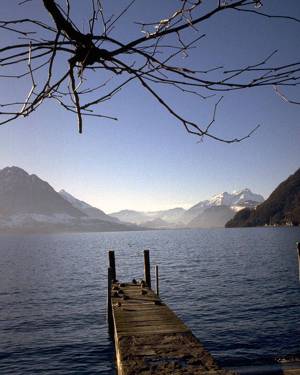 Lake Lucerne Poster featuring the photograph Lake Lucerne by Flavia Westerwelle