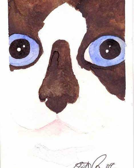 Cat Poster featuring the painting Large Eyed Cat Oswoa by Christine Callahan
