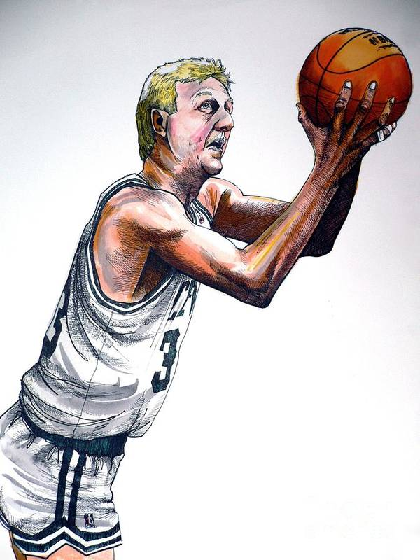 Larry Bird Poster featuring the painting Larry Bird by Dave Olsen