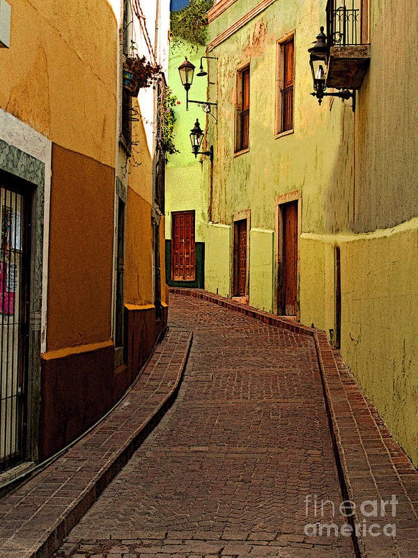 Darian Day Poster featuring the photograph Late Golden Light by Mexicolors Art Photography