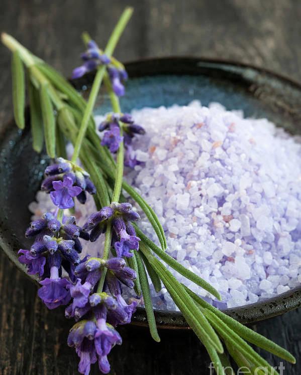 Bath Salts Poster featuring the photograph Lavender Bath Salts by Elena Elisseeva