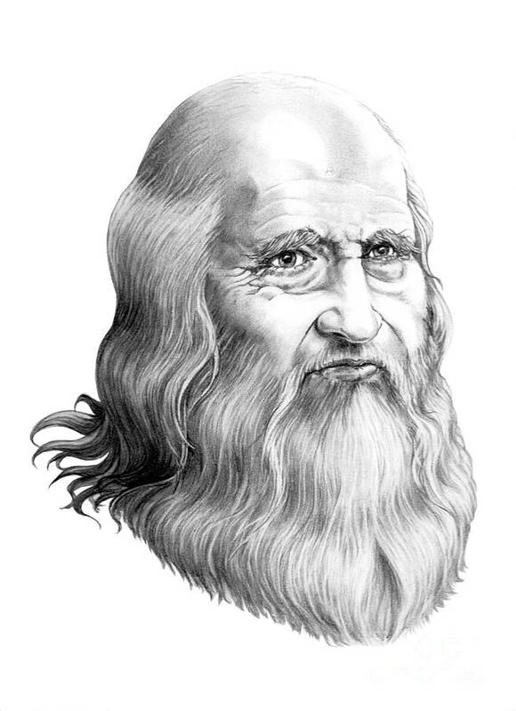 Famous Person Poster featuring the drawing Leonardo Da Vinci by Murphy Elliott