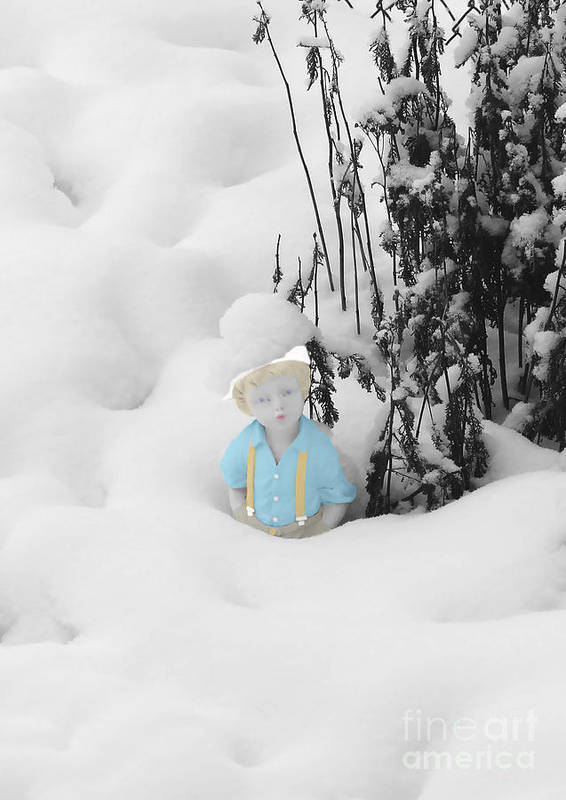 Garden Poster featuring the photograph Let It Snow by Al Bourassa