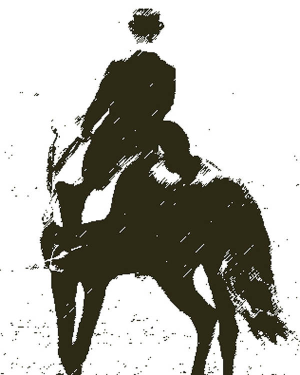 Horse Poster featuring the digital art Lets Dance by Donna Thomas