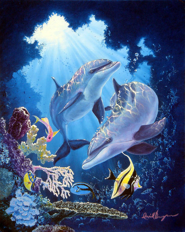 Dolphin Poster featuring the painting Light Of Serenity by Daniel Bergren