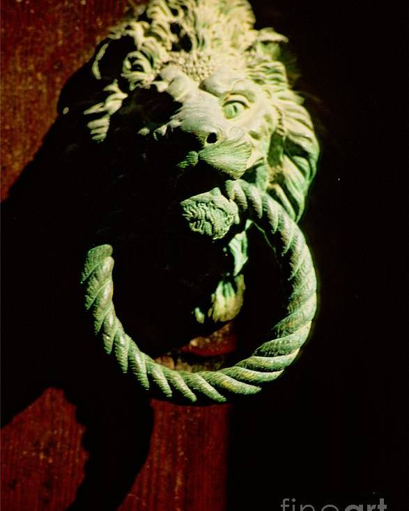 Venice Poster featuring the photograph Lion Door Knocker In Venice by Michael Henderson