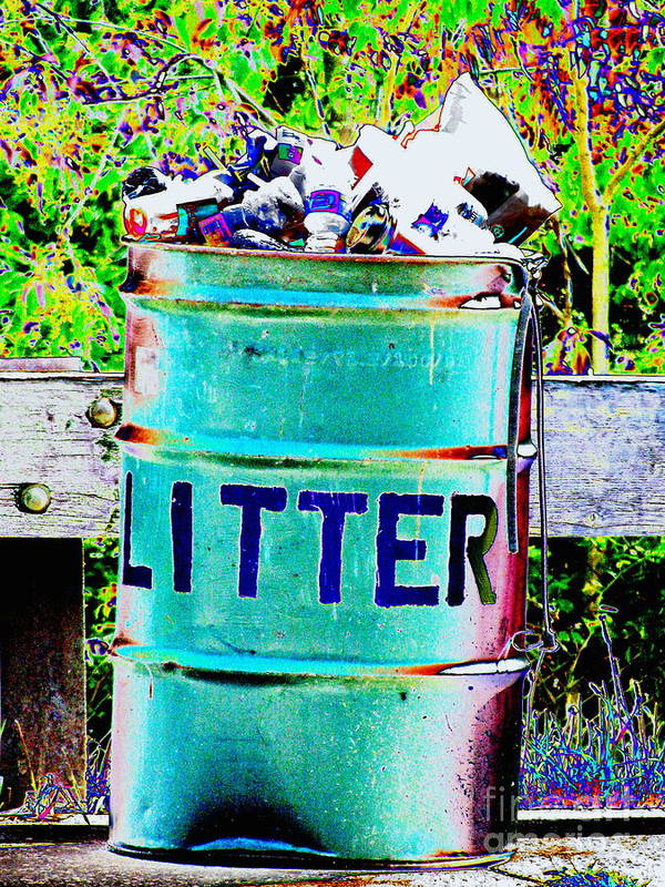 Litter Poster featuring the photograph Litter by Colleen Kammerer