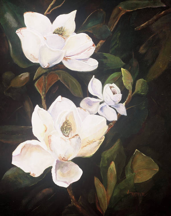 Floral Poster featuring the painting Little Gems by Jimmie Trotter