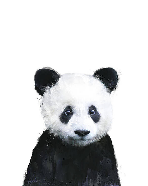 Panda Poster featuring the painting Little Panda by Amy Hamilton