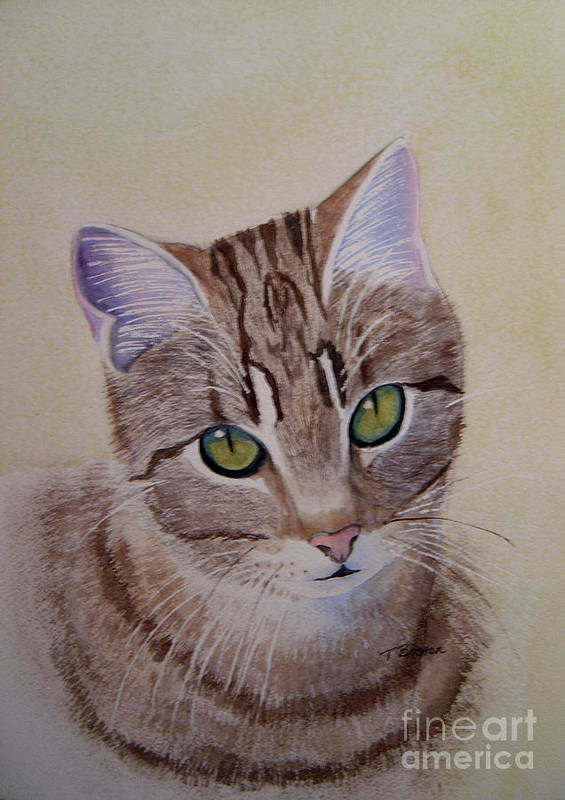 Animal Poster featuring the painting Little Zeke Stray Cat Series One by Teresa Boston