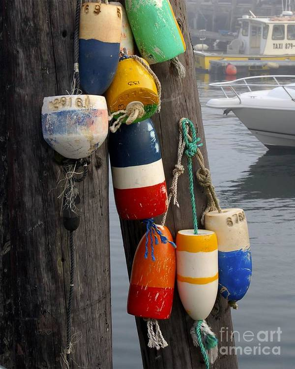 Lobster Poster featuring the photograph Lobster Buoy At Water Taxi Pier by Faith Harron Boudreau