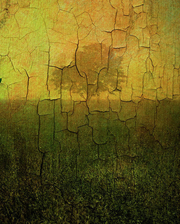 Digital Poster featuring the photograph Lone Tree In Meadow -textured by Dave Gordon