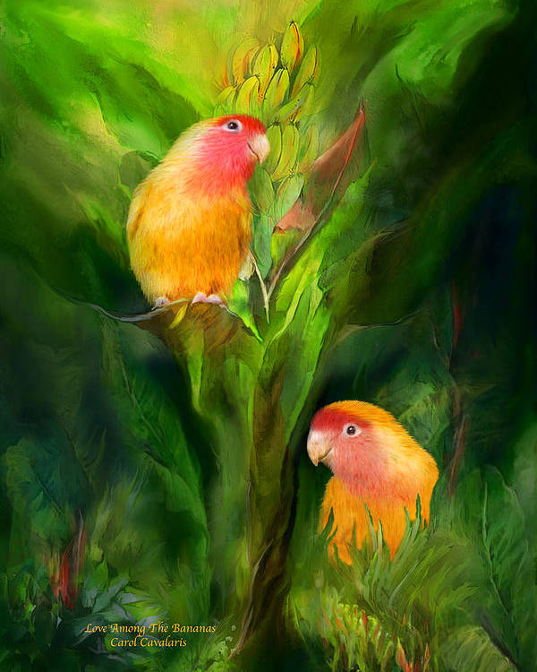 Lovebird Poster featuring the mixed media Love Among The Bananas by Carol Cavalaris