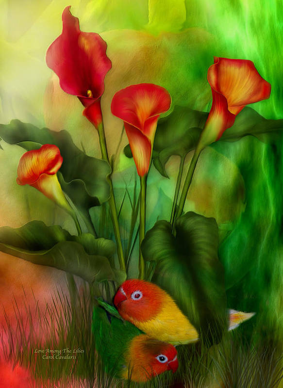 Lovebird Poster featuring the mixed media Love Among The Lilies by Carol Cavalaris