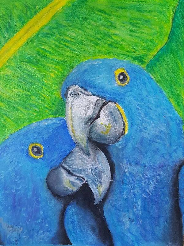Birds Poster featuring the pastel Lovebirds by Cassy Allsworth