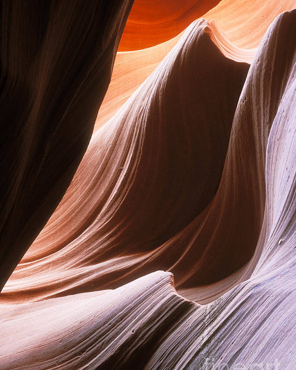 Slot Canyon Poster featuring the photograph Lower Antelope Slot Canyon by Sandra Bronstein