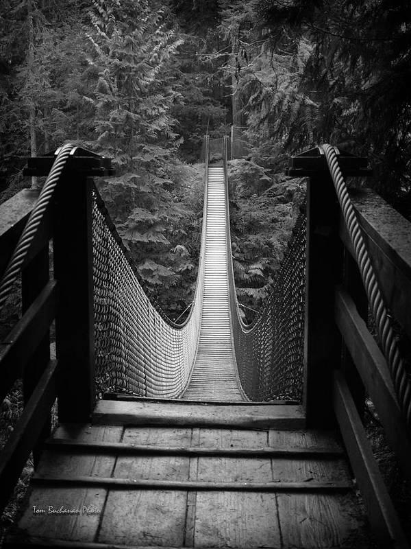 Lynn Canyon Poster featuring the photograph Lynn Canyon Bridge by Tom Buchanan