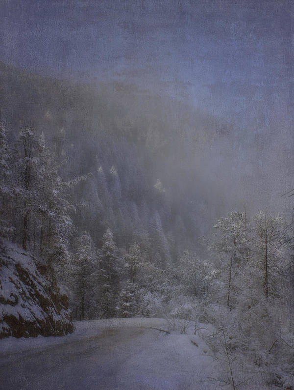 Beautiful Poster featuring the photograph Magical Winter Day by Ellen Heaverlo
