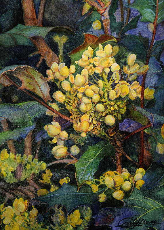 Flowers Poster featuring the painting Mahonia Morning by Craig Gallaway