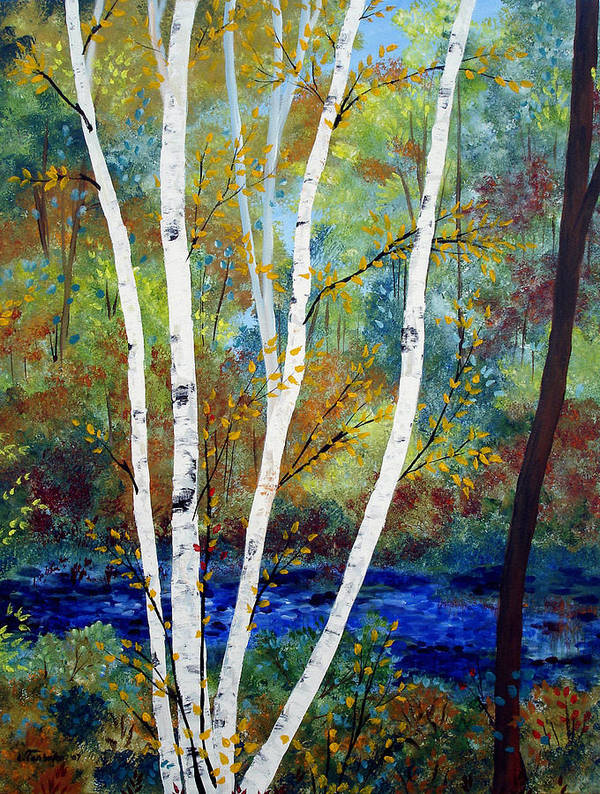 Landscape Poster featuring the painting Maine Birch Stream by Laura Tasheiko