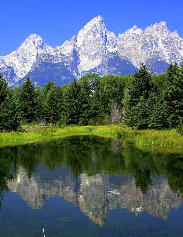 Grand Teton National Park Poster featuring the photograph Majestic Tetons by Marty Koch