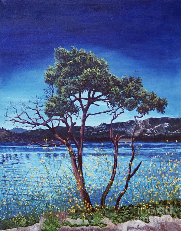 Llandscape Painting Poster featuring the painting Manzanita At Lake Hemet by Jiji Lee