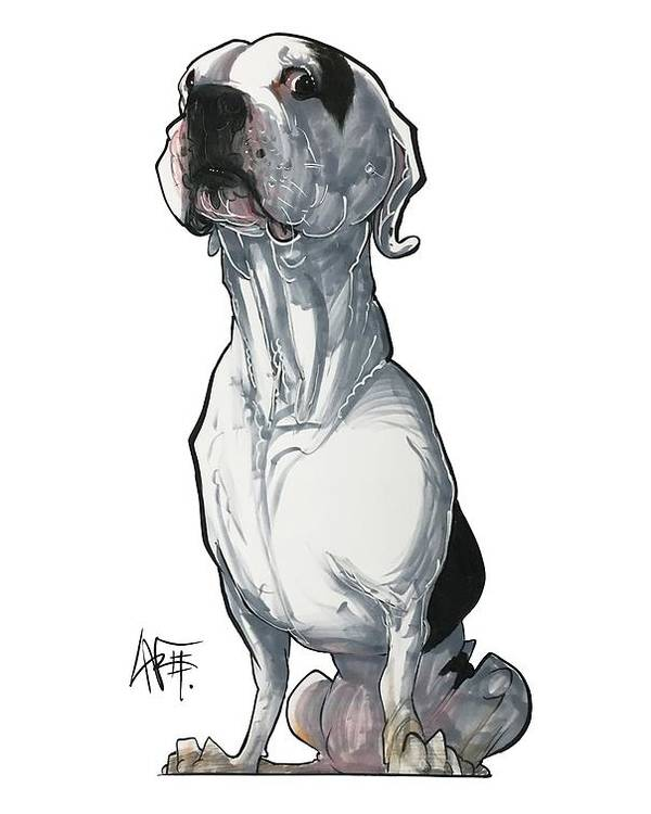 Pet Portrait Poster featuring the drawing Maranos 3348 by John LaFree