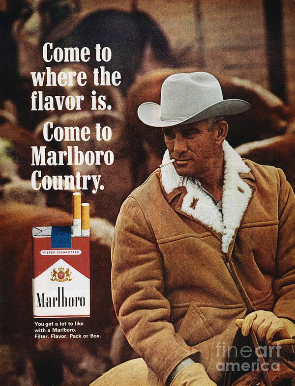 Marlboro Cigarette Ad Poster By Granger