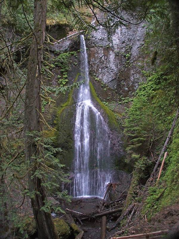 Waterfall Poster featuring the photograph Marymere Falls by Gene Ritchhart