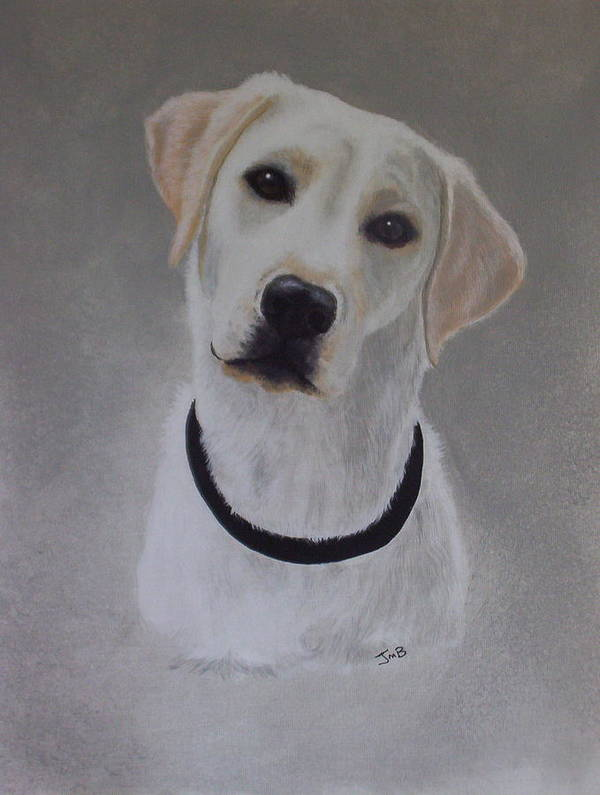 Pet Portrait Poster featuring the painting Maxie by Janice M Booth